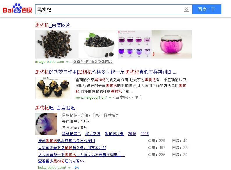 黑枸杞网站案例